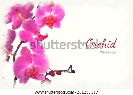 A watercolour pink orchid over a white background, with space for text. EPS10 vector format - stock vector