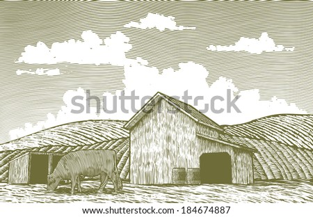 A woodcut-style illustration of a cow grazing in a barn yard. - stock vector