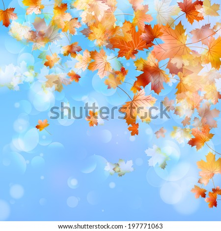 Abstract autumn background with leaves and evening light. And also includes EPS 10 vector - stock vector