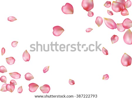 Abstract background with flying pink rose petals. Vector illustration isolated on a white background. - stock vector