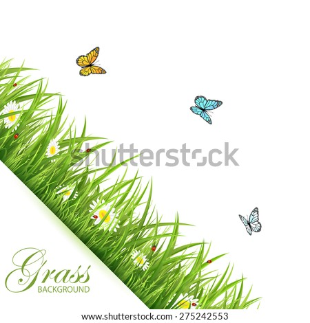 Abstract background with green grass, flowers, flying butterflies and ladybirds, illustration. - stock vector