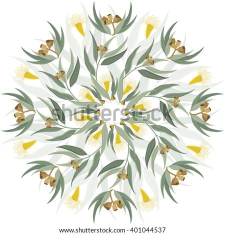 Abstract circular ornament, mandala with native australian plant eucalyptus leaves and flowers. Round floral pattern isolated on white background - stock vector