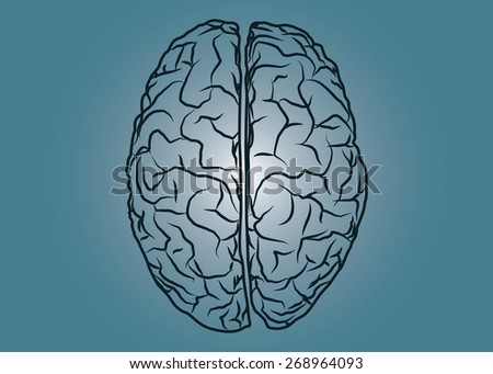 Abstract conceptual image of human brain drawing a top view with space as background in vector - stock vector