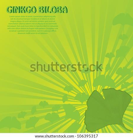 Abstract green ginkgo biloba background - stock vector