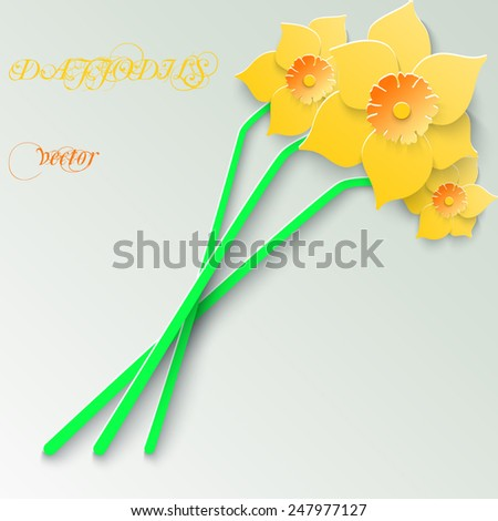 Abstract greeting card with 3d yellow daffodils. Spring floral paper background. Vector illustration.  - stock vector