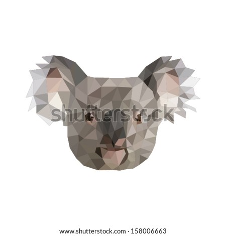 Koala Face Stock Photos, Images, & Pictures | Shutterstock