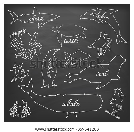 Abstract Line and Dot Sea Animals Set Vector Illustrations on Chalkboard - stock vector