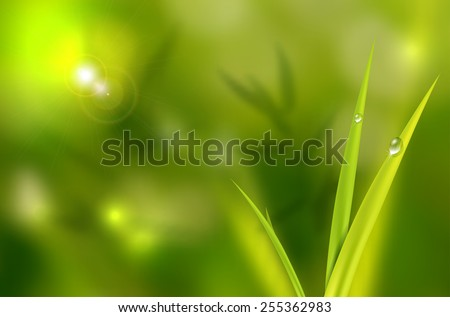 Abstract natural background with grass and waterdrops - vector illustration - stock vector