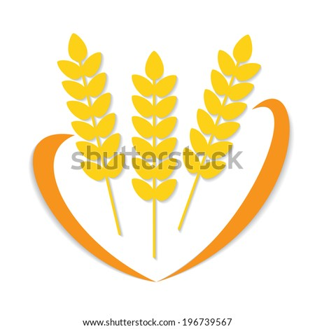 Abstract vector flat wheat ears on isolated white background with decorative line. Healthy eating - stock vector