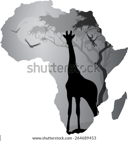 african sunset silhouette black and white tangled