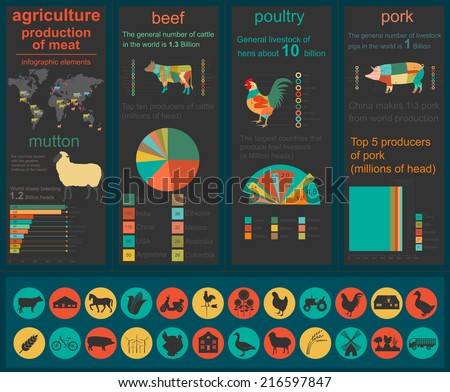 Agriculture, animal husbandry infographics, Vector illustrationstry info graphics. Vector illustration - stock vector
