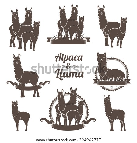 Alpaca and llams emblems collection. - stock vector