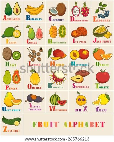 Z Alphabet Images Alphabet & Fruit Vector Set. From A to Z. Illustration. Education for ...
