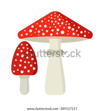 Amanita poisonous mushroom, isolated vector amanita on white background. Fly agaric or fly Amanita mushroom, Amanita muscaria. Red fly agaric amanita muscaria isolated on white background. - stock vector