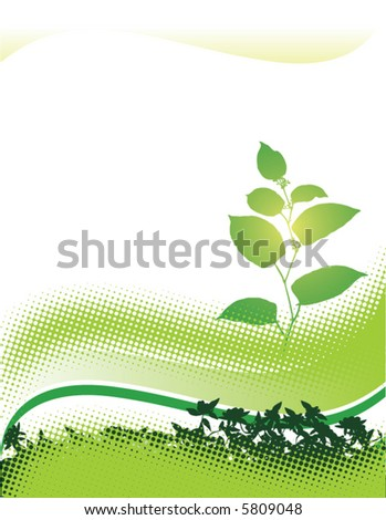 An abstract floral grunge background in green - stock vector