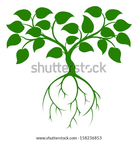 An illustration of a green tree graphic with long roots - stock vector