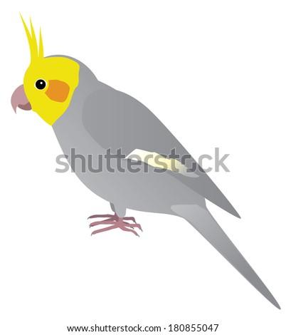 An Illustration of a parakeet - stock vector
