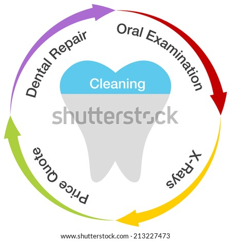 An image of a dental chart. - stock vector