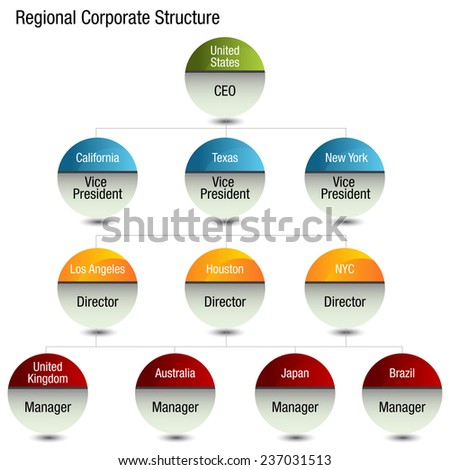 An image of a regional org chart. - stock vector
