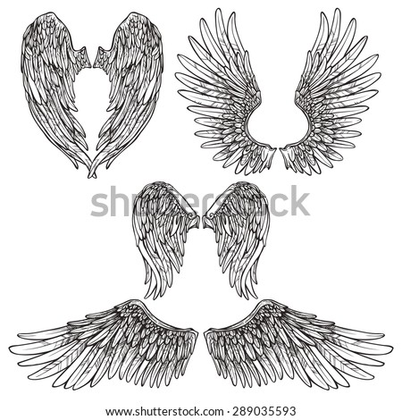 Angel or bird wings abstract sketch set isolated vector illustration - stock vector