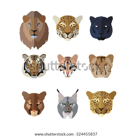 Animal Icons in Flat style: Big Cats ( Lion Jaguar Panther Tiger Ocelot  Cheetah Puma Lynx Leopard ) - stock vector