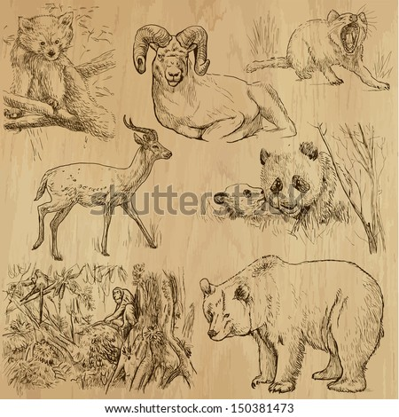 Animals around the World (part 3). Collection of hand drawn illustrations (originals, no tracing). Description: Each drawing comprise of two layers of outlines, colored background is isolated. - stock vector