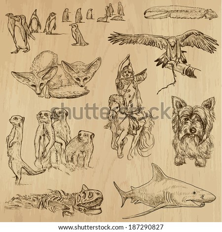 Animals around the World (set no. 13) - Collection of an hand drawn illustrations. Description: Each drawing comprise of two layer of outlines, colored background is isolated. - stock vector