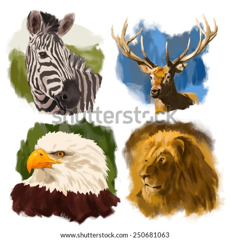Animals hand drawn vector heads portraits set: zebra, deer, eagle, lion - stock vector