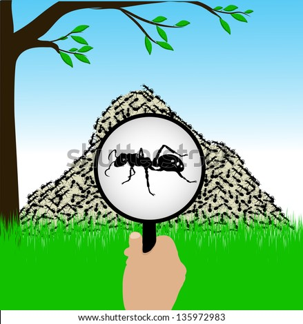 ant under a magnifying glass - stock vector