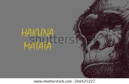 Ape head in black and white. Vector illustration with hakuna matata inscription. - stock vector