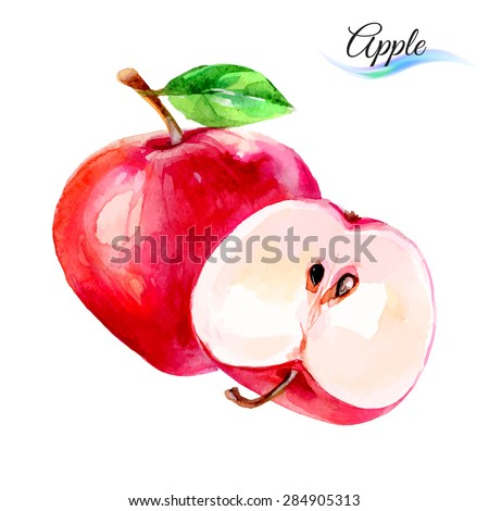 Apple drawing watercolor isolated on white background - stock vector