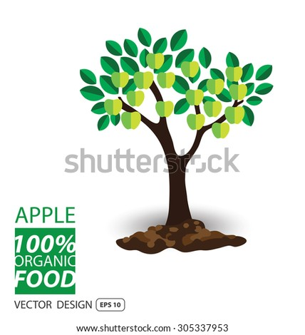 Apple, fruits vector illustration. - stock vector