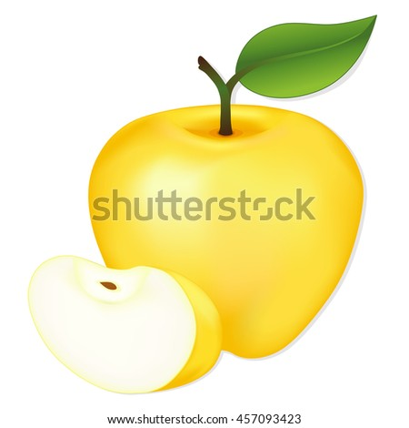 Apple, Golden Delicious, slice, fresh, natural orchard garden fruit isolated on white background.  - stock vector