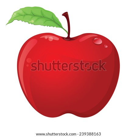 Apple isolated on white - stock vector