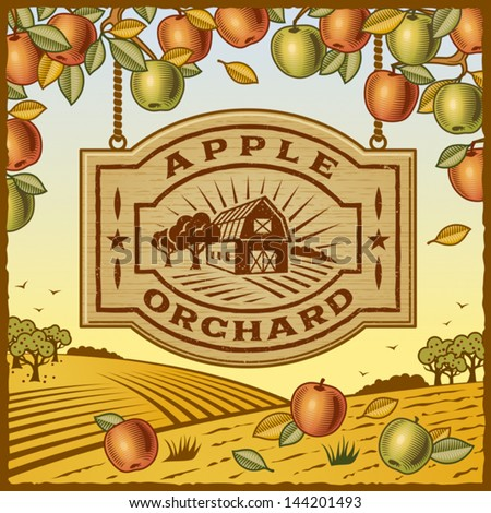 Apple Orchard. Fully editable vector. - stock vector