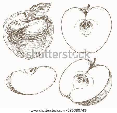 Sliced Apple Drawing Cut Fruits Hand Drawn