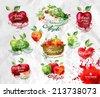 Apples.Vector format - stock vector