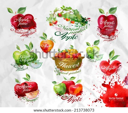 Apples.Vector format - stock vector