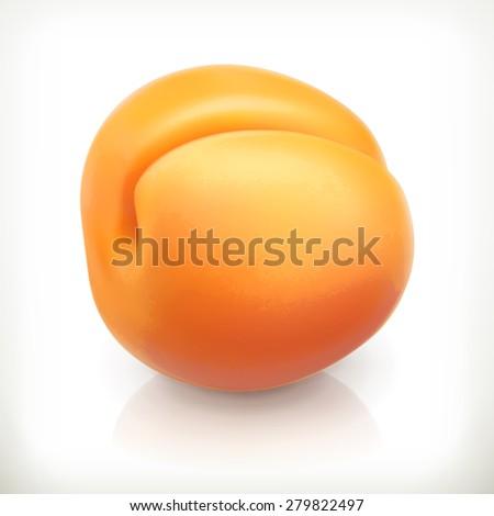 Apricot, summer fruit, vector icon - stock vector