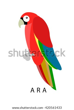 Ara parrot. Red ara vector illustration. Exotic ara bird in flat design.  Geometrical ara isolated on white background. Tropical cartoon ara. - stock vector