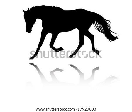 Arabian stallion - stock vector