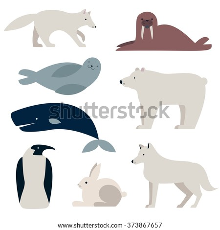 Arctic and Polar Animals vector set. Polar bear, Penguin, seal,  whale, hare, wolf.  Flat style characters. Isolated on white background. - stock vector