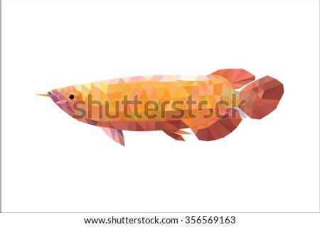 Arowana fish polygon - stock vector