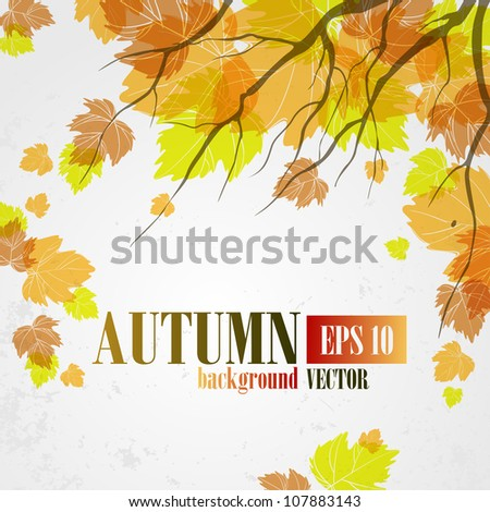 Autumn background. Vector illustration. Eps 10. - stock vector