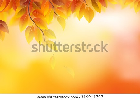 Autumn background with branches and leaves - stock vector