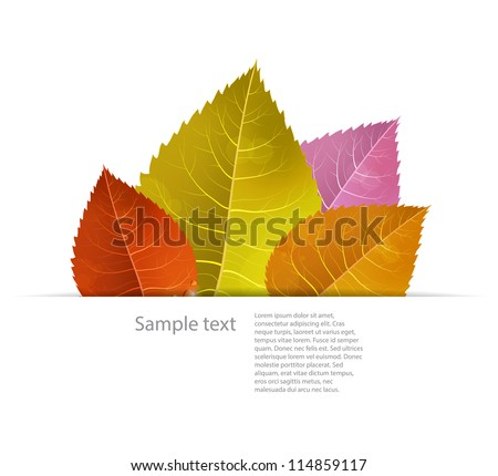 Autumn background with colored leaves in a paper fold. Seasonal EPS10 vector image. - stock vector