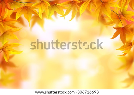 Autumn background with maple leaves, vector illustration - stock vector