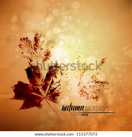 Autumn Background with Nature Printing of Fallen Leaves | Vector EPS10 with organized layers - stock vector