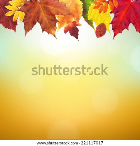 Autumn Border With Gradient Mesh, Vector Illustration - stock vector