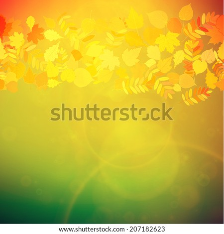 Autumn Colorful red and yellow leaves falling abstract. EPS10 - stock vector
